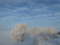 Talv Puise Ninal